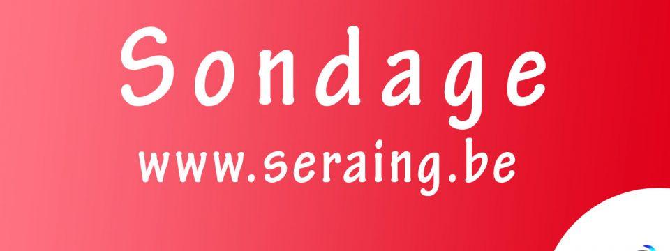 Sondage : Que pensez-vous du nouveau site de la Ville de Seraing ?