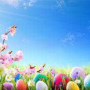 Fermeture des services ce lundi 17 avril