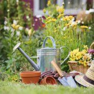 Le jardin des petits délices