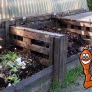 L'ASBL Télé Service Seraing inaugure un deuxième site de compostage collectif