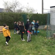 Les élèves de 3e et 4e année de l'école des Bouleaux s'investissent dans l'environnement