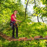 Le parcours d'accrobranches du Val Saint-Lambert ouvrira ses portes cet été