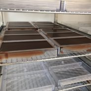 «Millésime Chocolat» ouvre ses portes aux Sérésiens