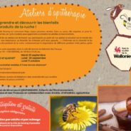 Découvrez les bienfaits des produits de la ruche en participant aux ateliers d'apithérapie de la Ville !